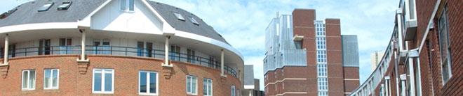 朴茨茅斯大学