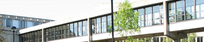 斯特林大学