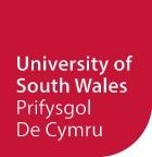 南威尔士大学